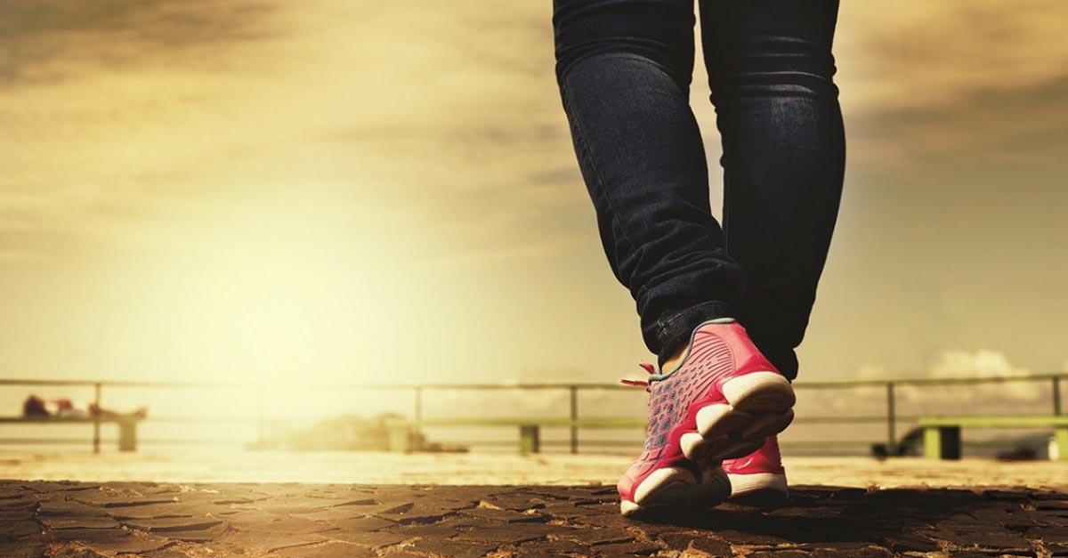 esercizio fisico modificare il microambiente tumorale 2