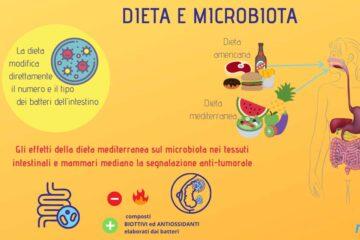 Dieta microbiota cancro al seno 1